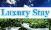 Luxury Stay LLC